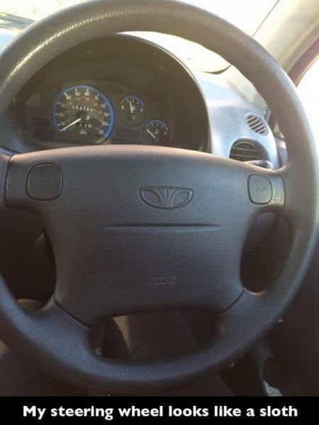 Slothy. Maybe sloths look like steering wheels. My steering wheel looks like a sloth. it looks serious