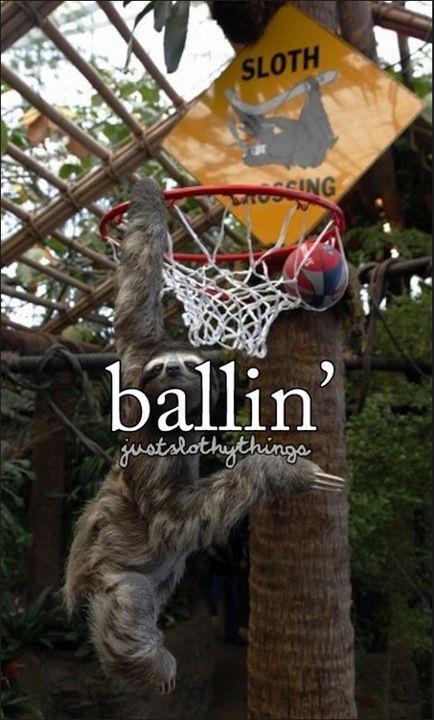 Slothythings. Not OC, duh... I'm Jarl Balgruuf and I be ballin, ballin, ballin, Jarl Ballin, swag