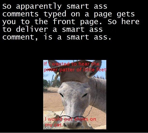 Smart ass prius comments