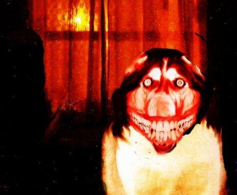 Smile. .. penis Dog smile happy JPG