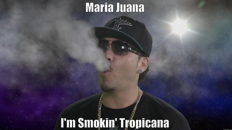 Smokin' Tropicana. Baby Bash smokin' Tropicana on the new video Maria Juana!!!! www.youtube.com/watch?v=GmjWS8Qt5nM. I' m ' Trimaran. Ya off weed faggots baby bash chingo bling Marijuana maria juana
