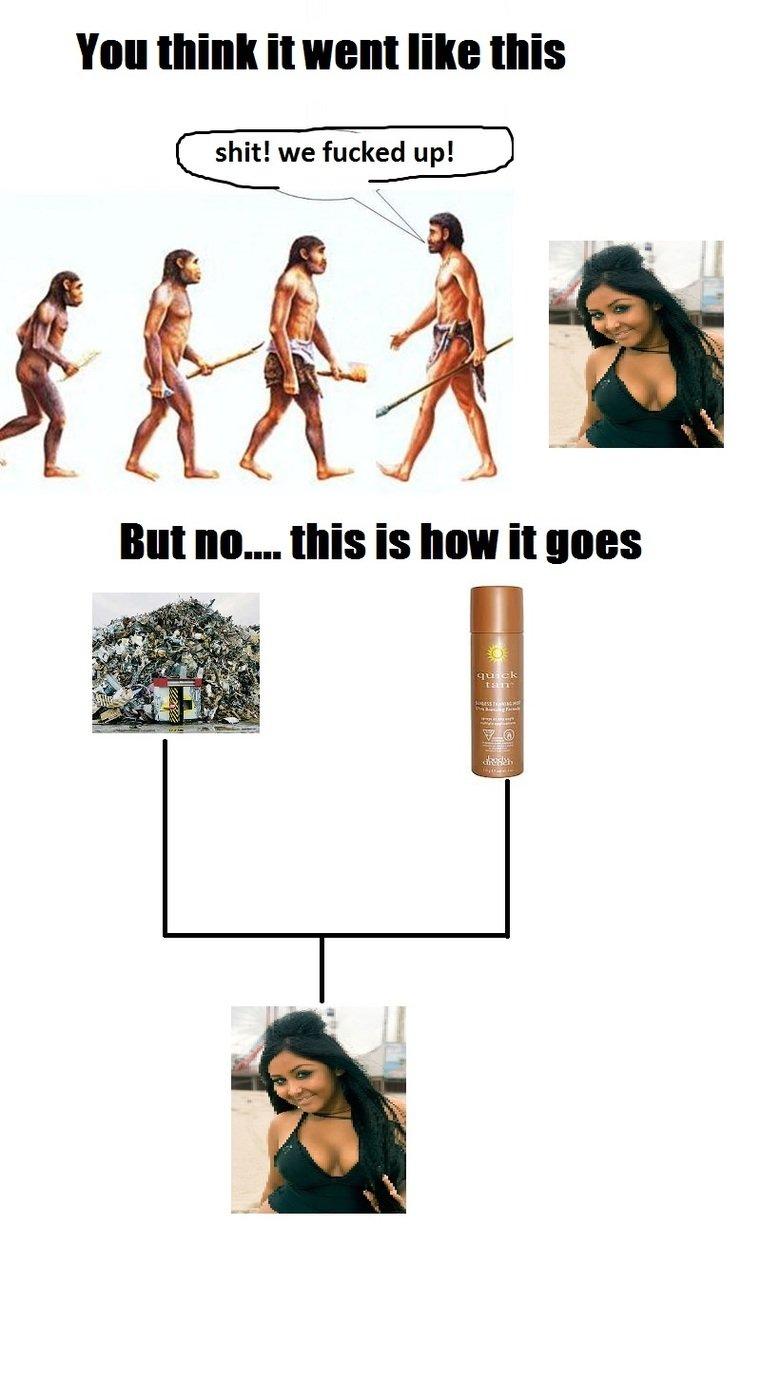 snooki's family tree. .