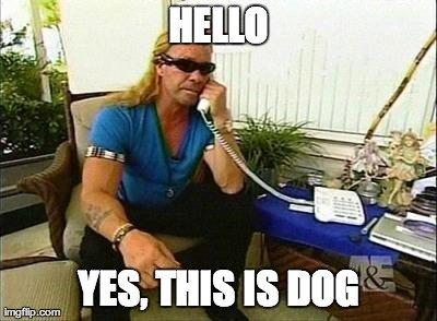 Snooping Doggy Dog. .