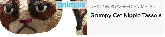 So I Saw This Ad...(Description). www.buzzfeed.com/mjs538/grumpy-cat-nipple-tassels.