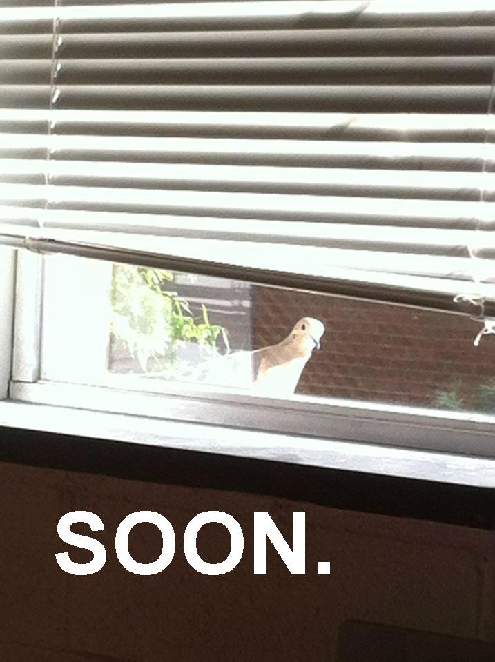Soon. .