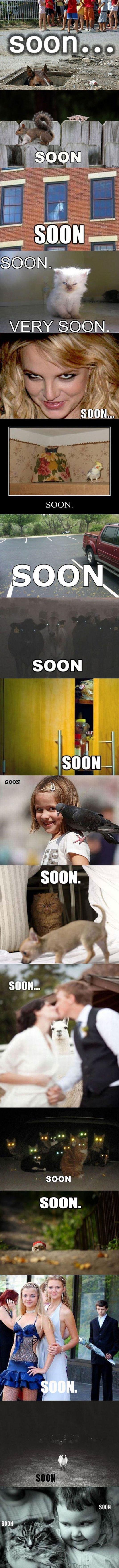 Soons. .