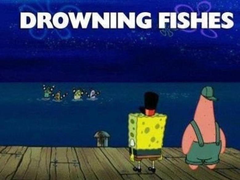 Spongebob Logic. .. Fishes. fishes...
