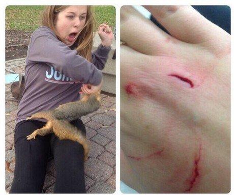 Squirrels in Texas don't mess around. .. It begins