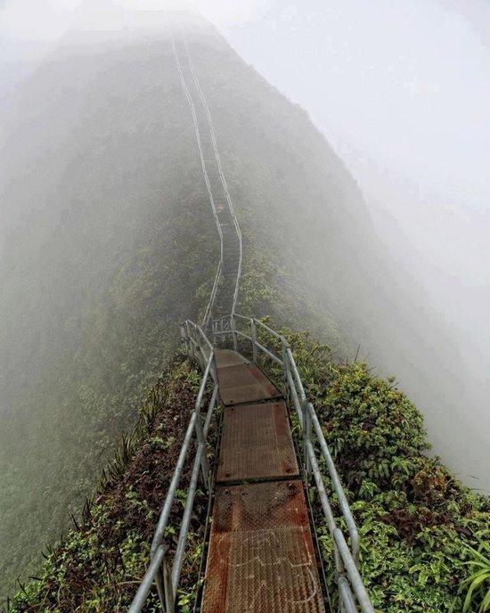 Stairway to Heaven. naturey.. stairway to nope
