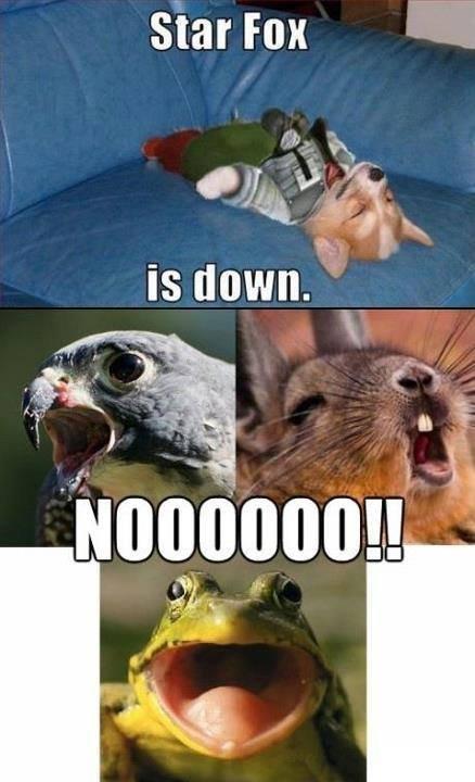 Starfox, no!. . Star Fox. why am i laughing so hard at this