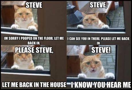 Steve Please!. . III WHEY I pam [EH MR ntl Mi, HIT ME I Ell too tlt TMM, PLEASE II] III. mm HT ME MN Ill m [MI ME