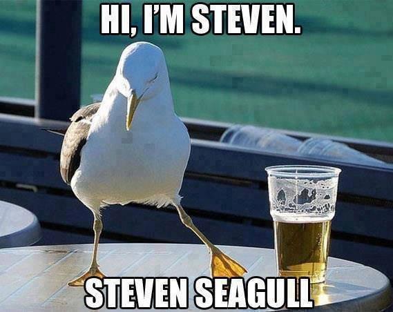 Steven. . i. III, PM STEVEN.