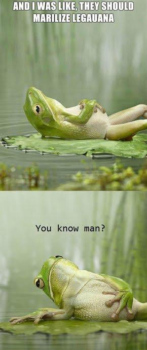 Stoned Frog. I roffled... Agreeing I am