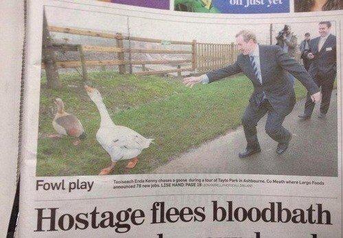 Stop Him, He's Getting Away!. .