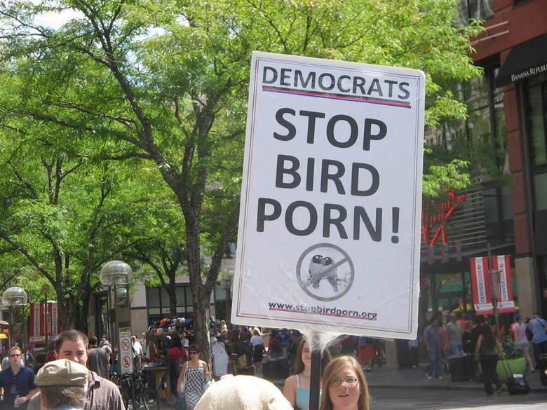 Stop Bird Porn!. Stoopid Democrats wit their Bird Pron.. !