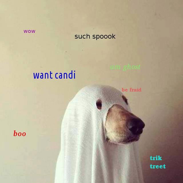 such Halloween. happy Halloween fj. aall boo