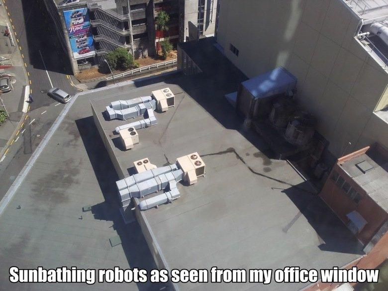 Sunbathing robots as seen from my office. . r. gna. it's... it's beautiful