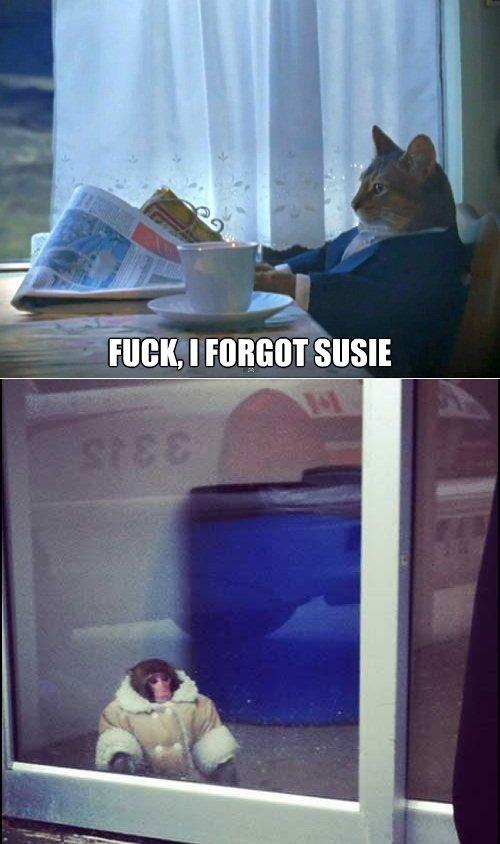 Susie. 33,3% OC. pussy monkey business