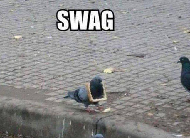 Swag. .. Syak TOOOP KEK