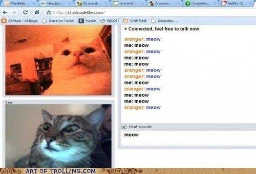 "Tail of two Kitties. Pun. adorer Donna ,"", rammer: murcan ml: anew mummar ararm I r'. MEN Kim? tranger: mm: -w HEW. >sranger"