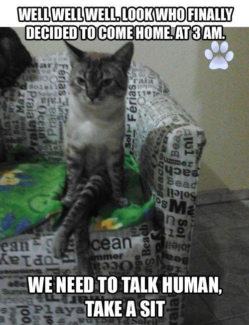 Take a Seat.... . TO some . AT 3 AM. WE NEH] TO TAM HUMAN. TAKE A SIT. take a sit