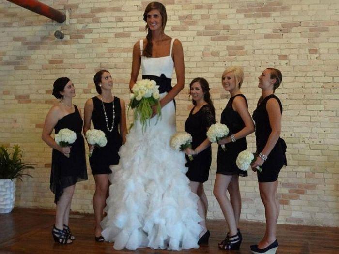 Tall Bitch. .
