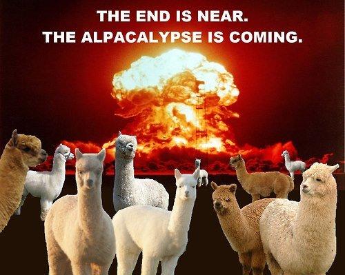 The+alpacalypse_90b42f_4238173.jpg