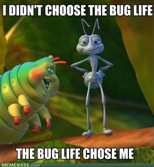 The bug life. . I DIDN' T THE Mill Mi MEMEBASE, com