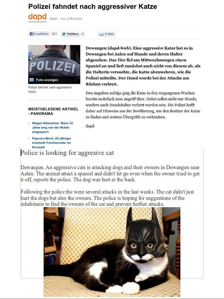 "The hero Dewangen deserves. the breath of my cat smells like catfood. Polizei nach aggressive Kane Tali"" lg .tiy, urdv. r, Defanged . Eine aggressive Kane hat e"
