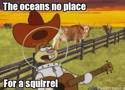 The real cause of hurricane sandy. . aittir sandy