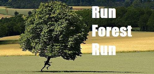 the tree that could run. .. So much Pun!!!!!!! FUUUUUUUUUUUUUUUUUUUUUUUUUU