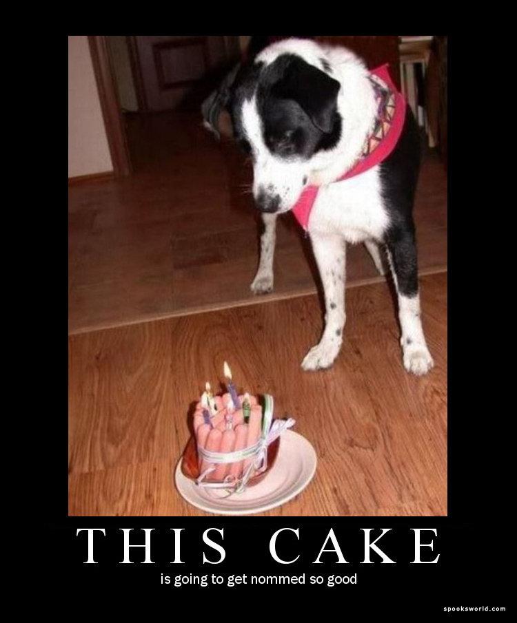 This cake. nom nom nom.. looks like a tampon cake to me DAGS Cake Food Birthday nom nom