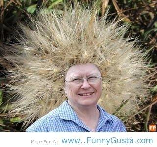 thorny hair style. thorny hair style.