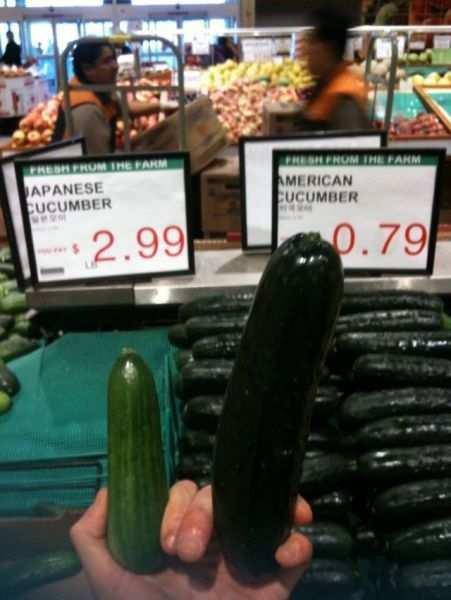 Title. Totally unoriginal content.. Russian cucumber