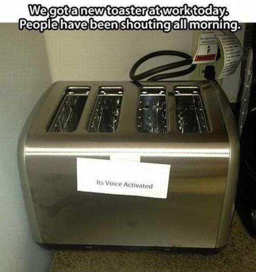 Toaster. . Pet: -__ e .' iii. rhill: iti' shouting all morning.