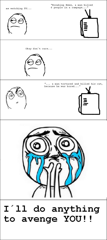 TV. . I' ll do anything to avenge YOU!!