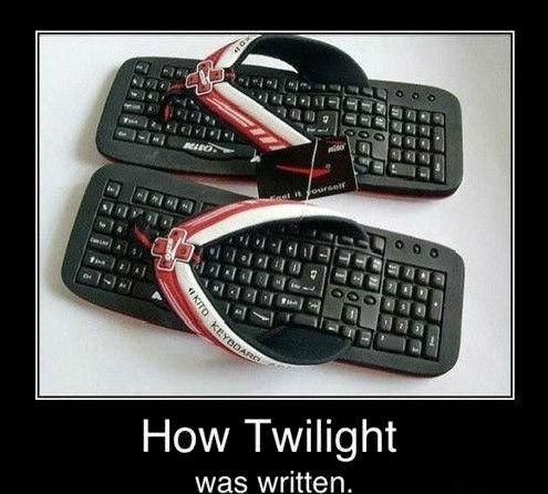 twilight writers. . How Twilight was written.
