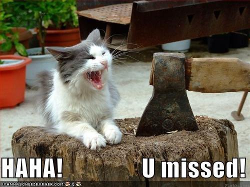 u missed!. oh cat i get you next time.