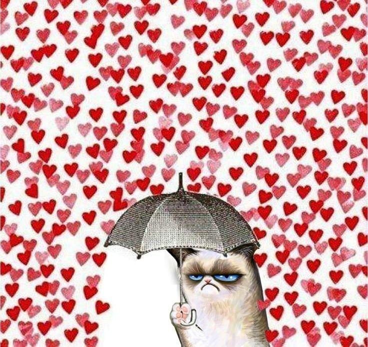 umbrella. .