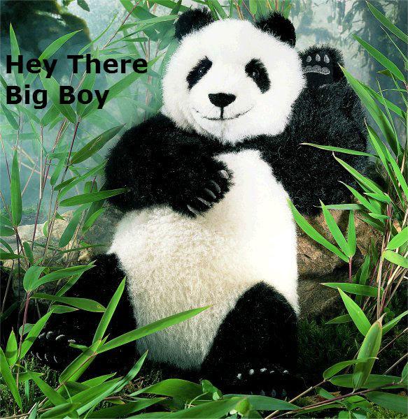 (untitled). . Sexy panda