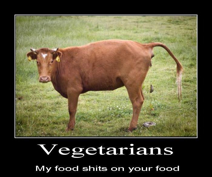 http://static.fjcdn.com/pictures/Veggies+fuck+vegans_b766d2_3766057.jpg
