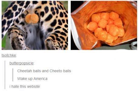 WAKE UP MURICA!. Look at the tags. Cheetah balls anti halls Wayan up America i hate tns website