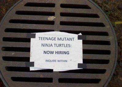 WANTED: Teenage Mutant Ninja Turtle. lolololololololol :3. MUTANT NINJA TURTLE: NEW HIRING