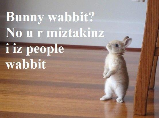 wabbit. oc.