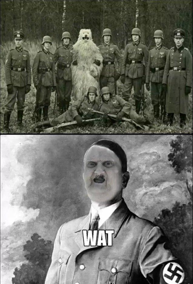 WAT. . Nazi Bear wat