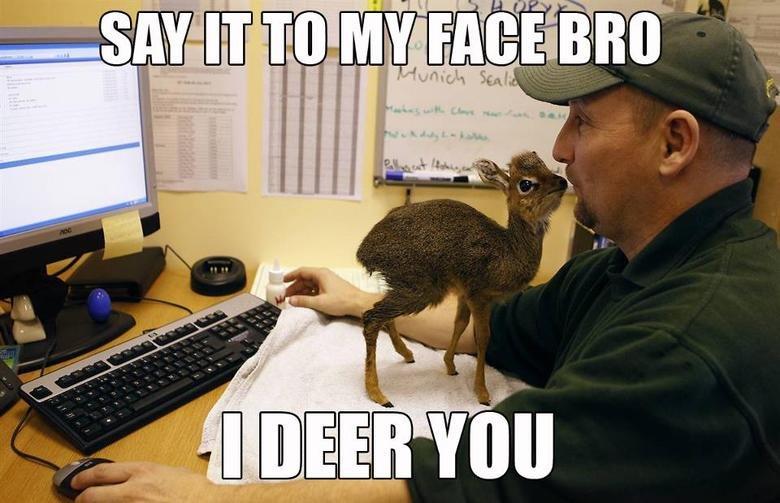 Well, hello deer. I'm afraid of carnies..