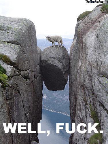 Well fuck. silly goats :3. WELL, muusic,.' well fuck goat Got stuck