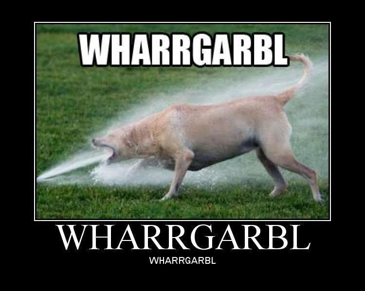 WHARRGARBL. WHARRGARBL. WHARRGARBL. SO MANY BEWBS!!!1!1!1!!!11