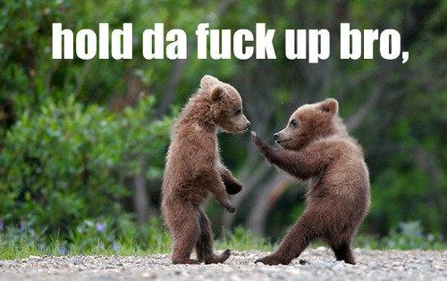 when my freinds hit on my sister. bears. INN Ila HIGH III] Strait, Bears