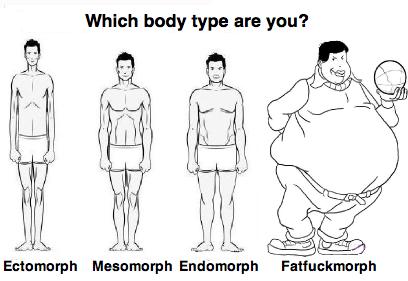 Which body type are you?. . which Body type are you'?. Fixed